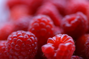pick your own raspberries in Ottawa